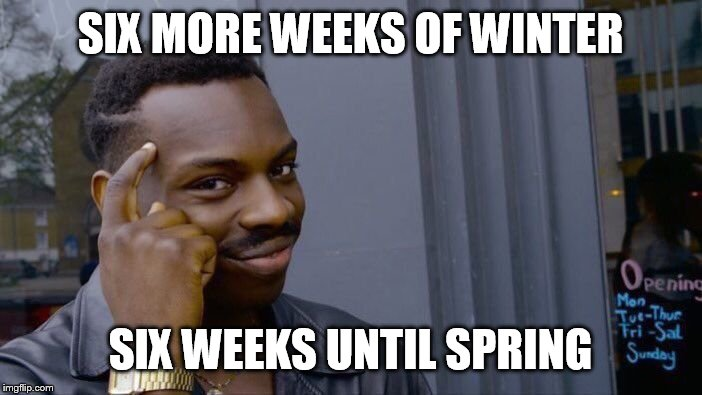 Who you gonna believe? | SIX MORE WEEKS OF WINTER SIX WEEKS UNTIL SPRING | image tagged in memes,roll safe think about it | made w/ Imgflip meme maker