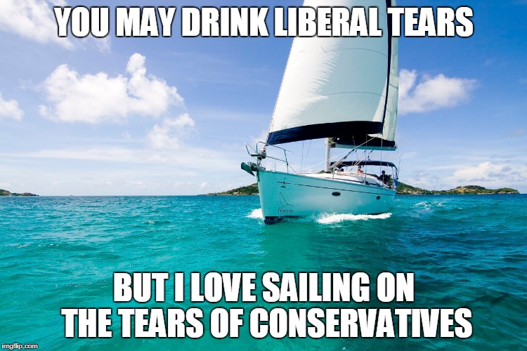 Sad Conservatives | YOU MAY DRINK LIBERAL TEARS BUT I LOVE SAILING ON THE TEARS OF CONSERVATIVES | image tagged in nunes,politics,political meme,trump,liberal vs conservative | made w/ Imgflip meme maker