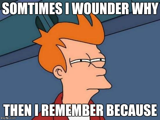 Futurama Fry Meme | SOMTIMES I WOUNDER WHY THEN I REMEMBER BECAUSE | image tagged in memes,futurama fry | made w/ Imgflip meme maker