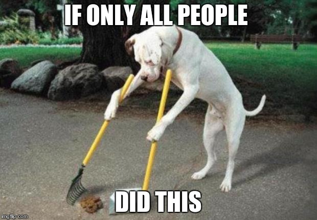 Dog poop | IF ONLY ALL PEOPLE DID THIS | image tagged in dog poop | made w/ Imgflip meme maker