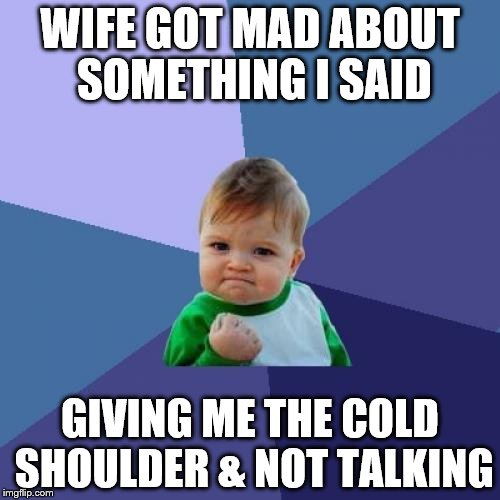 Success Kid | WIFE GOT MAD ABOUT SOMETHING I SAID GIVING ME THE COLD SHOULDER & NOT TALKING | image tagged in memes,success kid | made w/ Imgflip meme maker