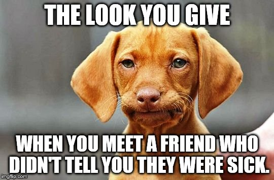 THE LOOK YOU GIVE WHEN YOU MEET A FRIEND WHO DIDN'T TELL YOU THEY WERE SICK. | image tagged in frowning dog | made w/ Imgflip meme maker