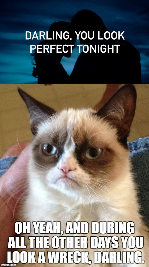 Ironic Music | OH YEAH, AND DURING ALL THE OTHER DAYS YOU LOOK A WRECK, DARLING. | image tagged in ed sheeran,grumpy cat,irony | made w/ Imgflip meme maker
