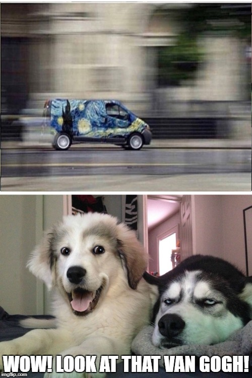 "The Fast and the ""Furry"" us 