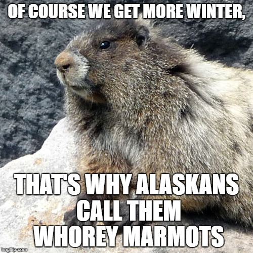 alaska groundhog day | OF COURSE WE GET MORE WINTER, THAT'S WHY ALASKANS CALL THEM W**REY MARMOTS | image tagged in groundhog day,hoary marmot,alaska | made w/ Imgflip meme maker