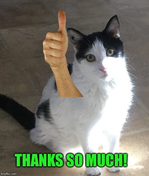 THANKS SO MUCH! | made w/ Imgflip meme maker
