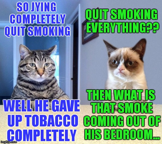 Completely over tobacco somehow I don't even care if I'm around it anymore..  | SO JYING COMPLETELY QUIT SMOKING THEN WHAT IS THAT SMOKE COMING OUT OF HIS BEDROOM... QUIT SMOKING EVERYTHING?? WELL HE GAVE UP TOBACCO COMP | image tagged in take a seat cat and grumpy cat review,no smoking,jying | made w/ Imgflip meme maker