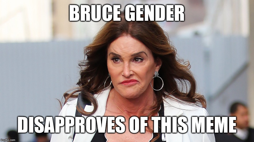 BRUCE GENDER DISAPPROVES OF THIS MEME | made w/ Imgflip meme maker