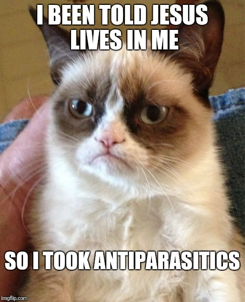 Someone up for atheist jokes? | I BEEN TOLD JESUS LIVES IN ME SO I TOOK ANTIPARASITICS | image tagged in memes,grumpy cat | made w/ Imgflip meme maker