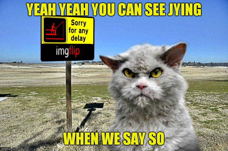 imgflip sorry with pompous cat | YEAH YEAH YOU CAN SEE JYING WHEN WE SAY SO | image tagged in imgflip sorry with pompous cat | made w/ Imgflip meme maker
