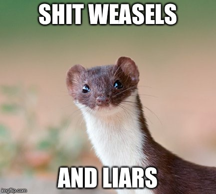 Shit weasels | SHIT WEASELS AND LIARS | image tagged in political humor | made w/ Imgflip meme maker