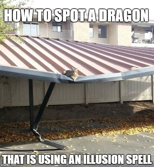 How to spot a dragon... | HOW TO SPOT A DRAGON THAT IS USING AN ILLUSION SPELL | image tagged in cat,dragon,illusion,dnd,spell,magic | made w/ Imgflip meme maker