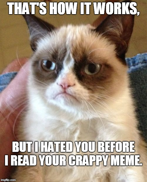 Grumpy Cat Meme | THAT'S HOW IT WORKS, BUT I HATED YOU BEFORE I READ YOUR CRAPPY MEME. | image tagged in memes,grumpy cat | made w/ Imgflip meme maker