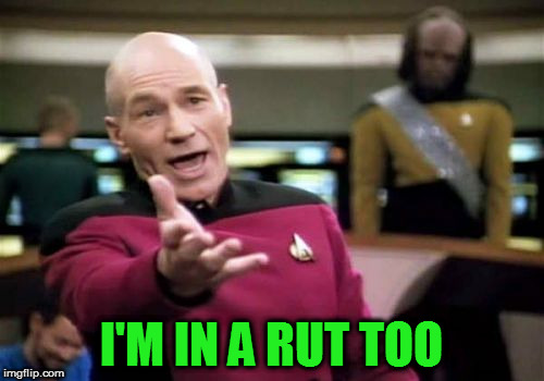 Picard Wtf Meme | I'M IN A RUT TOO | image tagged in memes,picard wtf | made w/ Imgflip meme maker