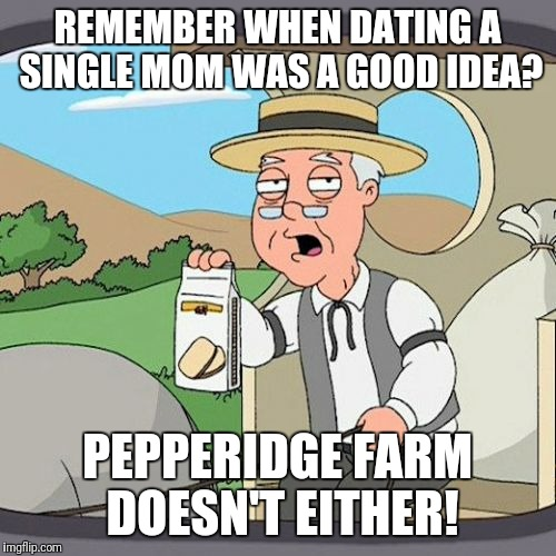 Pepperidge Farm Remembers Meme | REMEMBER WHEN DATING A SINGLE MOM WAS A GOOD IDEA? PEPPERIDGE FARM DOESN'T EITHER! | image tagged in memes,pepperidge farm remembers,futurama fry,the most interesting man in the world | made w/ Imgflip meme maker