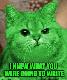 RayCat Annoyed | I KNEW WHAT YOU WERE GOING TO WRITE | image tagged in raycat annoyed | made w/ Imgflip meme maker
