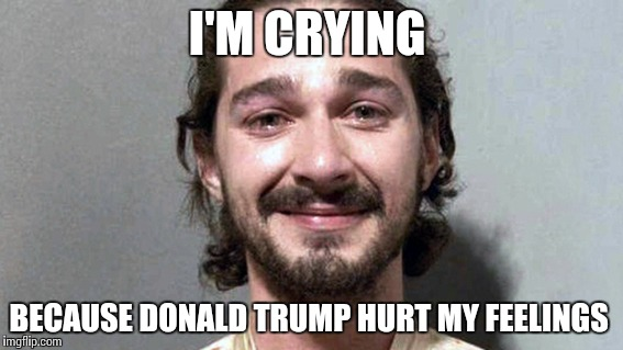 Shia labeouf cry | I'M CRYING BECAUSE DONALD TRUMP HURT MY FEELINGS | image tagged in shia labeouf cry | made w/ Imgflip meme maker