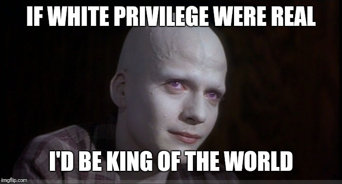 White Make Up Matters | IF WHITE PRIVILEGE WERE REAL I'D BE KING OF THE WORLD | image tagged in white make up matters | made w/ Imgflip meme maker