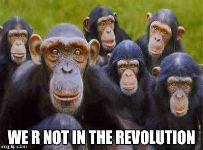 depressed monkeys |  WE R NOT IN THE REVOLUTION | image tagged in sad,monkey,revolution | made w/ Imgflip meme maker
