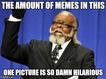 Too Damn High Meme | THE AMOUNT OF MEMES IN THIS ONE PICTURE IS SO DAMN HILARIOUS | image tagged in memes,too damn high | made w/ Imgflip meme maker