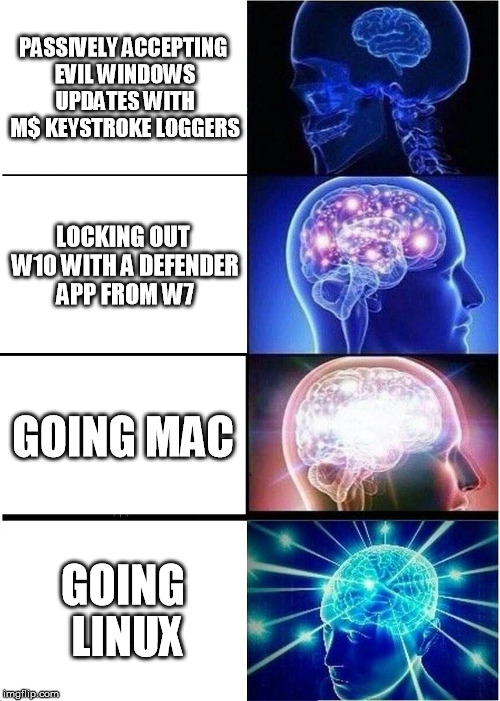Expanding Brain Meme | PASSIVELY ACCEPTING EVIL WINDOWS UPDATES WITH M$ KEYSTROKE LOGGERS LOCKING OUT W10 WITH A DEFENDER APP FROM W7 GOING MAC GOING LINUX | image tagged in memes,expanding brain | made w/ Imgflip meme maker