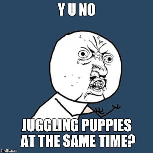 Y U No Meme | Y U NO JUGGLING PUPPIES AT THE SAME TIME? | image tagged in memes,y u no | made w/ Imgflip meme maker