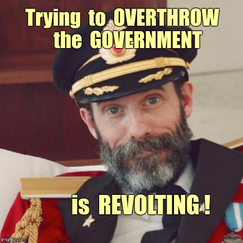 Government Overthrow | Trying  to  OVERTHROW   the  GOVERNMENT is  REVOLTING ! | image tagged in captain obvious,memes,government | made w/ Imgflip meme maker