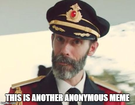 Captain Anonymous 2: The Official Sequel | THIS IS ANOTHER ANONYMOUS MEME | image tagged in memes,captain obvious,anonymous,sequel,oh wow are you actually reading these tags | made w/ Imgflip meme maker