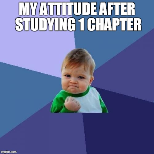 Success Kid Meme | MY ATTITUDE AFTER STUDYING 1 CHAPTER | image tagged in memes,success kid | made w/ Imgflip meme maker