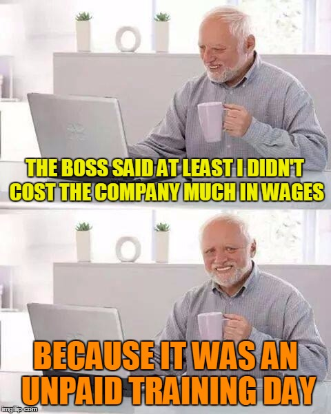 THE BOSS SAID AT LEAST I DIDN'T COST THE COMPANY MUCH IN WAGES BECAUSE IT WAS AN UNPAID TRAINING DAY | made w/ Imgflip meme maker
