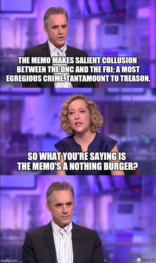 Cathy Newman | THE MEMO MAKES SALIENT COLLUSION BETWEEN THE DNC AND THE FBI; A MOST EGREGIOUS CRIME, TANTAMOUNT TO TREASON. SO WHAT YOU'RE SAYING IS THE ME | image tagged in cathy newman | made w/ Imgflip meme maker
