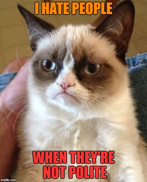 Grumpy Cat Meme | I HATE PEOPLE WHEN THEY'RE NOT POLITE | image tagged in memes,grumpy cat | made w/ Imgflip meme maker