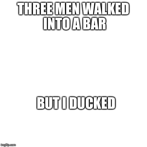 Nothing | THREE MEN WALKED INTO A BAR BUT I DUCKED | image tagged in nothing | made w/ Imgflip meme maker