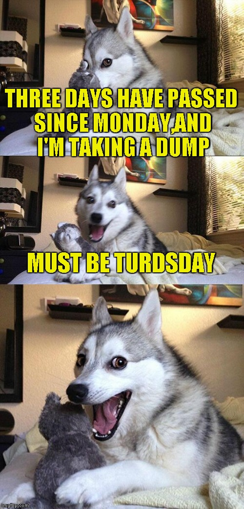 We should ask the dudes at Oxford to officially change the name of the day to Turdsday xD | THREE DAYS HAVE PASSED SINCE MONDAY,AND I'M TAKING A DUMP MUST BE TURDSDAY | image tagged in memes,bad pun dog,funny,thursday,turd,powermetalhead | made w/ Imgflip meme maker
