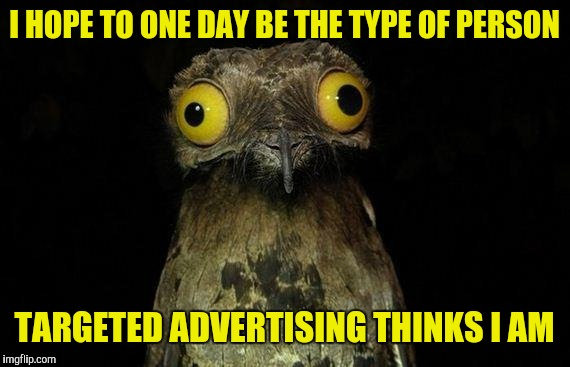 Weird stuff I do potoo | I HOPE TO ONE DAY BE THE TYPE OF PERSON TARGETED ADVERTISING THINKS I AM | image tagged in memes,weird stuff i do potoo | made w/ Imgflip meme maker