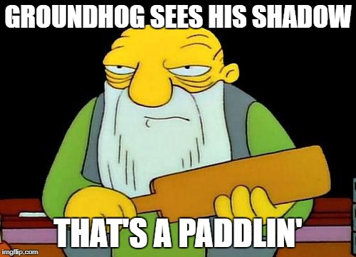 That's a paddlin' Meme | GROUNDHOG SEES HIS SHADOW THAT'S A PADDLIN' | image tagged in memes,that's a paddlin' | made w/ Imgflip meme maker