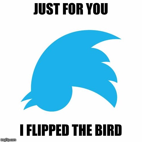Twitter birds says |  JUST FOR YOU; I FLIPPED THE BIRD | image tagged in twitter birds says,memes,funny,insults | made w/ Imgflip meme maker
