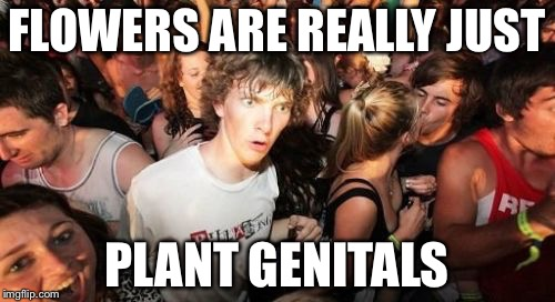 Sudden Clarity Clarence Meme | FLOWERS ARE REALLY JUST PLANT GENITALS | image tagged in memes,sudden clarity clarence | made w/ Imgflip meme maker
