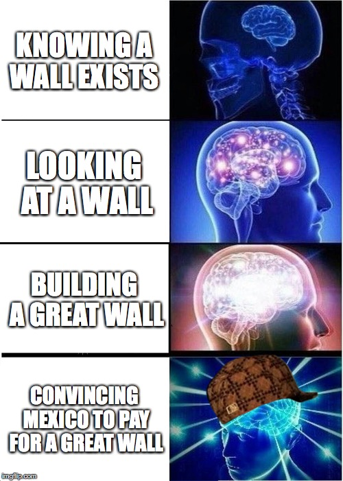Expanding Brain Meme | KNOWING A WALL EXISTS LOOKING AT A WALL BUILDING A GREAT WALL CONVINCING MEXICO TO PAY FOR A GREAT WALL | image tagged in memes,expanding brain,scumbag | made w/ Imgflip meme maker