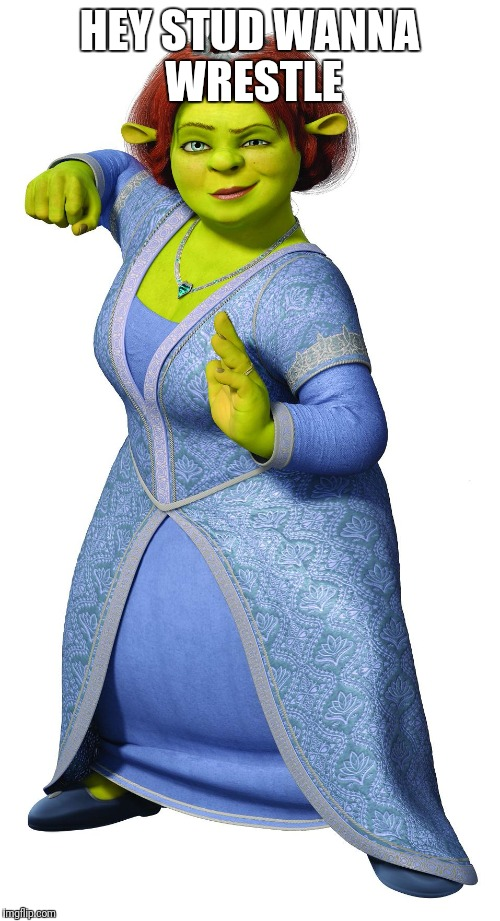 HEY STUD WANNA WRESTLE | image tagged in i am princess fiona | made w/ Imgflip meme maker