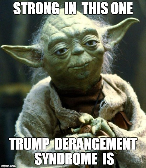 Star Wars Yoda Meme | STRONG  IN  THIS ONE TRUMP  DERANGEMENT SYNDROME  IS | image tagged in memes,star wars yoda | made w/ Imgflip meme maker