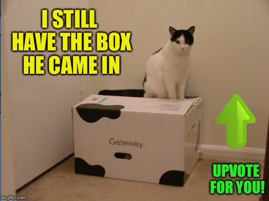 I STILL HAVE THE BOX HE CAME IN UPVOTE FOR YOU! | made w/ Imgflip meme maker