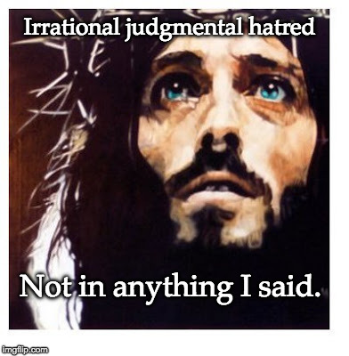 Blue-eyed Jesus | Irrational judgmental hatred Not in anything I said. | image tagged in blue-eyed jesus | made w/ Imgflip meme maker