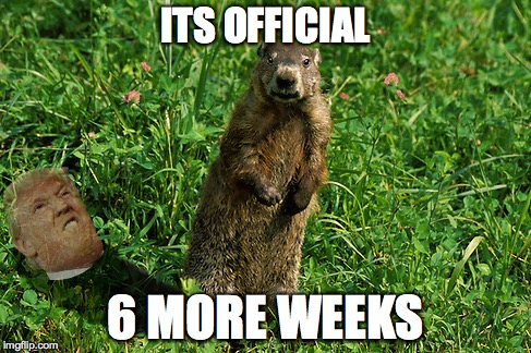 The Groundhog hath spoken!  | ITS OFFICIAL 6 MORE WEEKS | image tagged in groundhog day,donald trump approves | made w/ Imgflip meme maker
