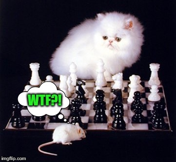 Mousie Senses the Endgame... | . | image tagged in chess,mouse trap,funny cat memes,wtf cat,game over | made w/ Imgflip meme maker