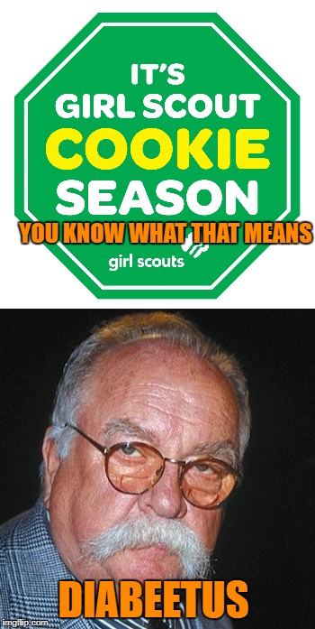 those little cookie pushers get me every time | YOU KNOW WHAT THAT MEANS DIABEETUS | image tagged in memes,girl scouts,girl scout cookies | made w/ Imgflip meme maker