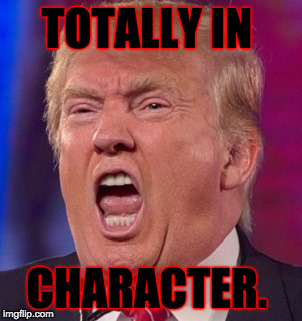 Angry Trump | TOTALLY IN CHARACTER. | image tagged in angry trump | made w/ Imgflip meme maker
