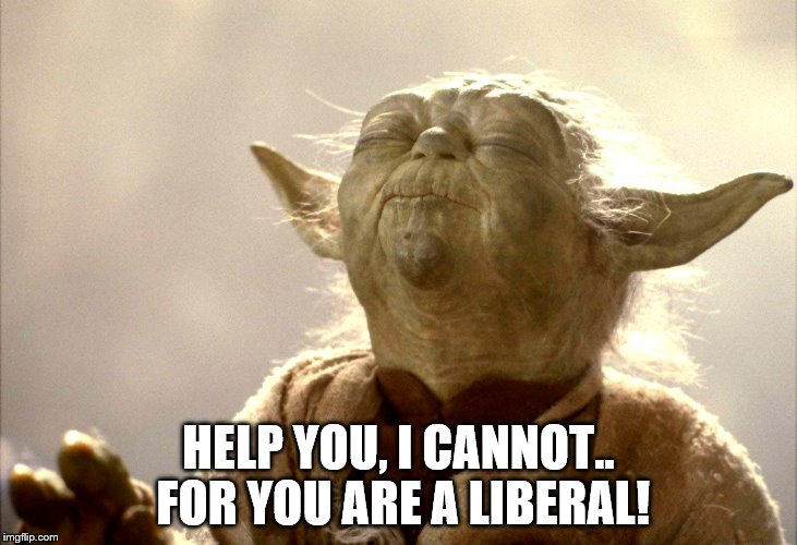 Yoda | HELP YOU, I CANNOT.. FOR YOU ARE A LIBERAL! | image tagged in liberal | made w/ Imgflip meme maker