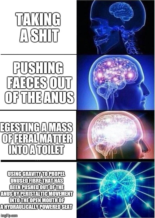 Expanding Brain Meme | TAKING A SHIT PUSHING FAECES OUT OF THE ANUS EGESTING A MASS OF FERAL MATTER INTO A TOILET USING GRAVITY TO PROPEL UNUSED FIBRE THAT HAS BEE | image tagged in memes,expanding brain | made w/ Imgflip meme maker