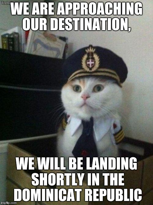 Captain Cat | WE ARE APPROACHING OUR DESTINATION, WE WILL BE LANDING SHORTLY IN THE DOMINICAT REPUBLIC | image tagged in captain cat | made w/ Imgflip meme maker